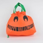 Reusable Halloween Treat Bag