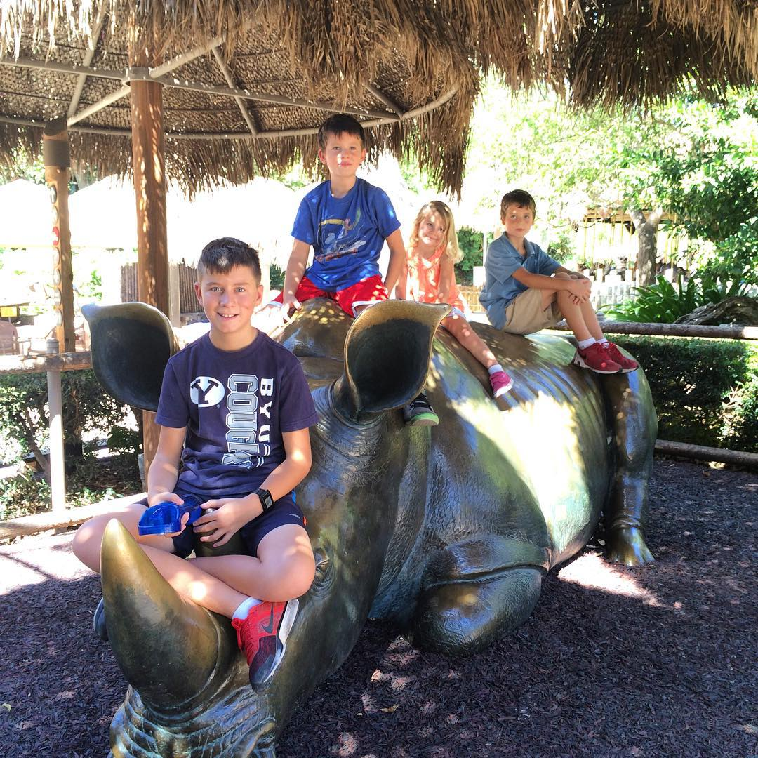 Fun day at the sdzsafaripark Our yearly passes expire today