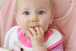 Homemade Baby Food in 15 Minutes or Less
