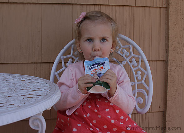Stonyfield yogurt pouches
