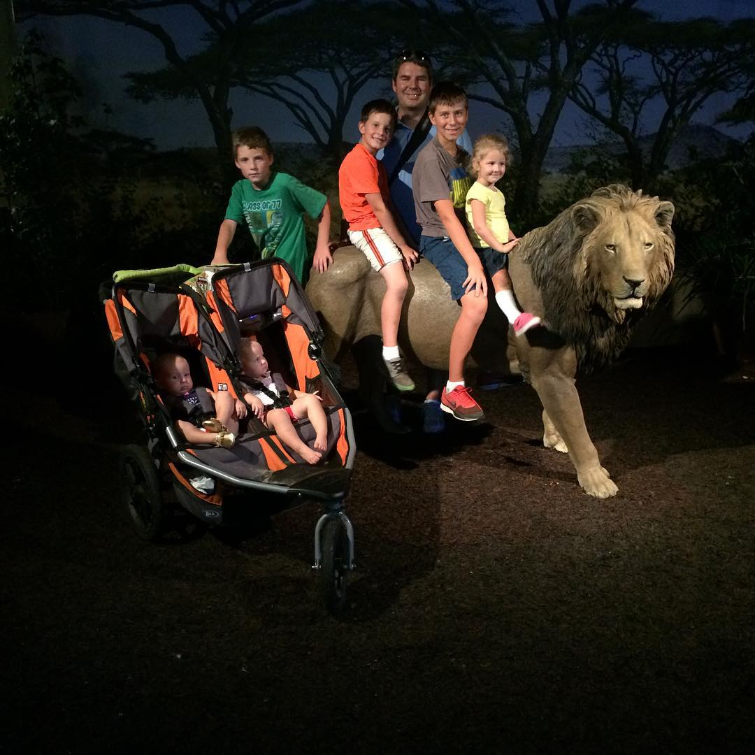 My family got eaten by lions at the sandiegozoo