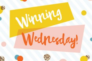 Winning Wednesday – November 25, 2015 (Giveaway Link Party)