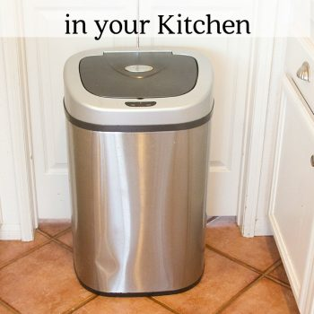 How to Freshen the 3 Stinkiest Places in your Kitchen