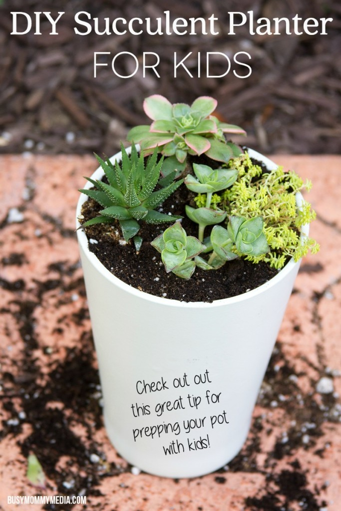 DIY Succulent Planter for Kids | I love this! I never would have thought of this trick for planting with kids. What a great idea!