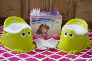How to Potty Train Twins