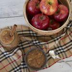 Homemade Instant Pot Applesauce