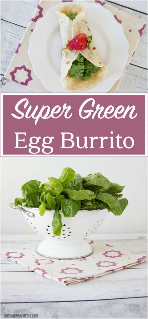 Super Green Egg Burrito