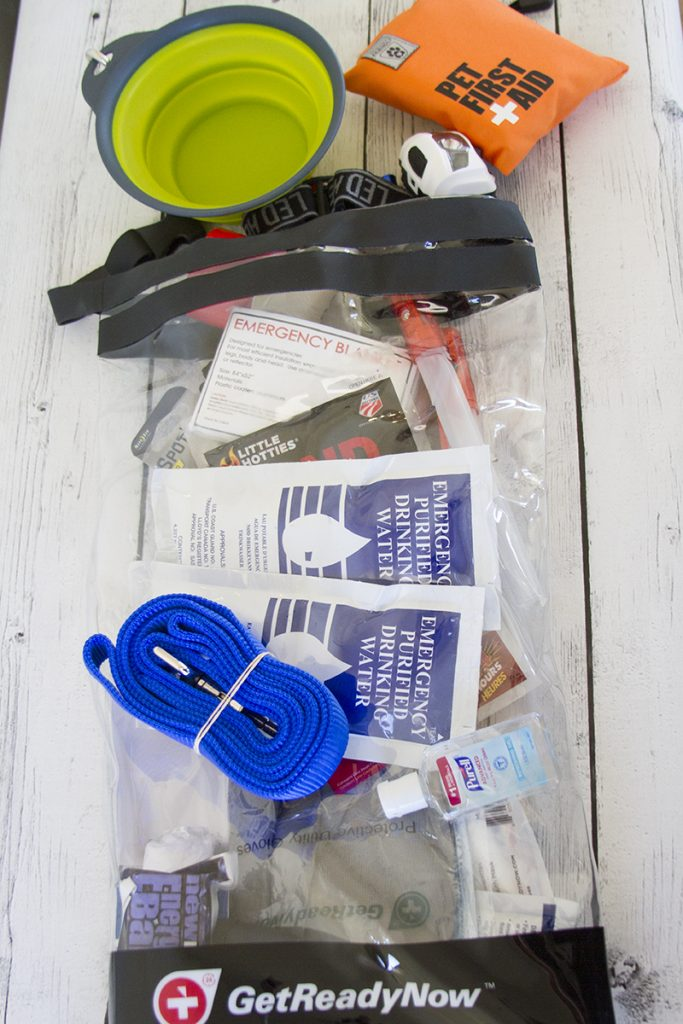 Get Ready Now Pet First Aid Kit