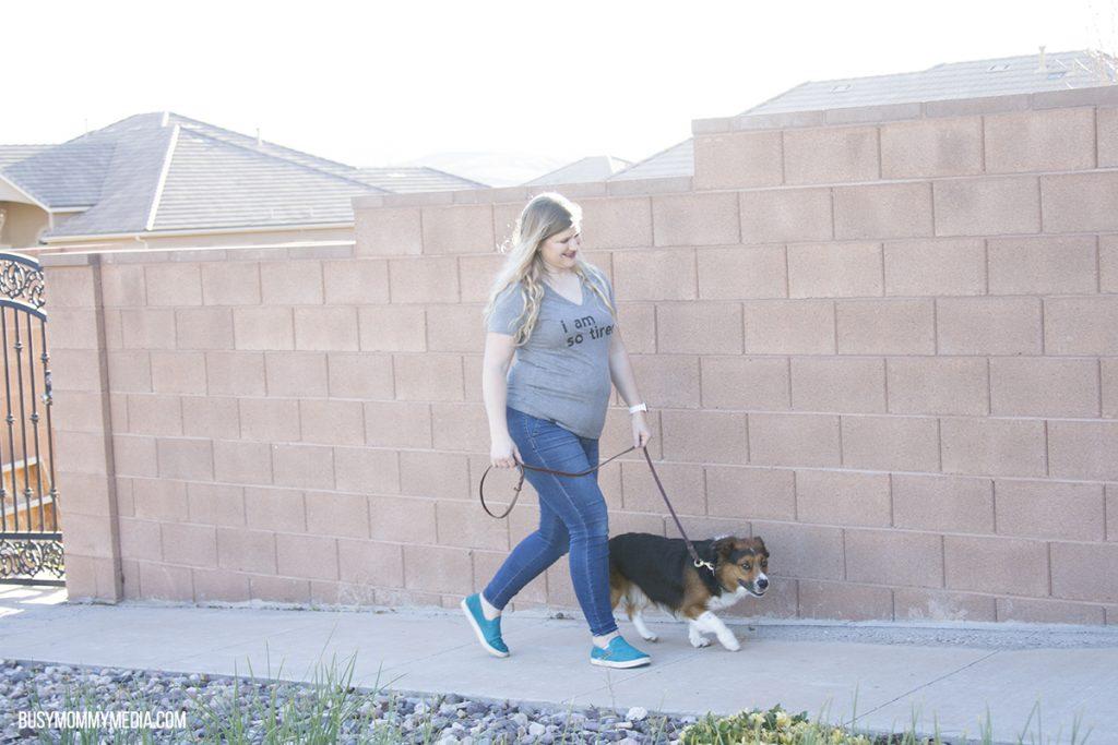 Pet Detox Results