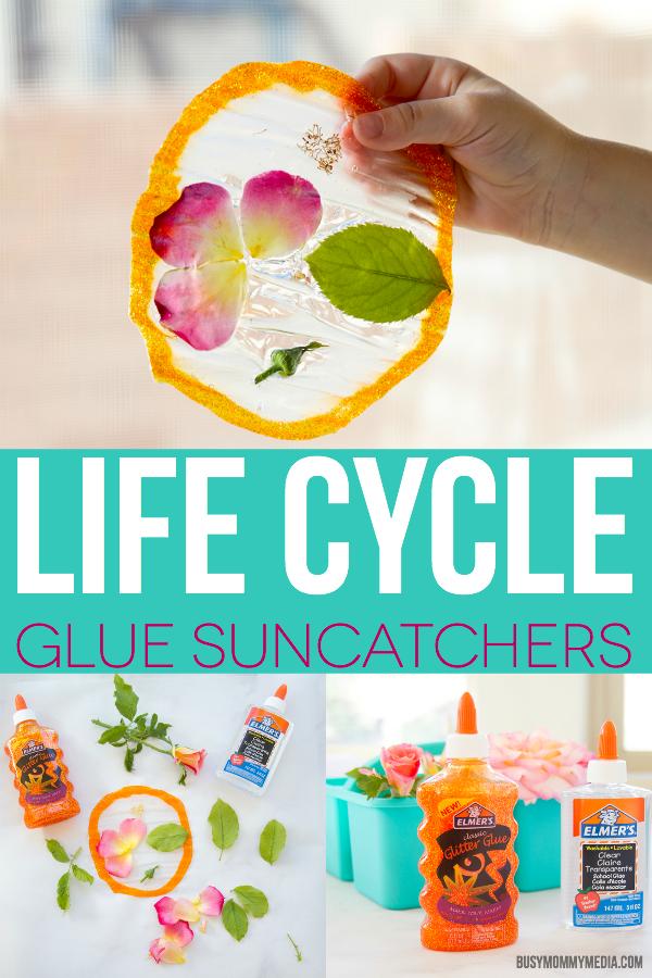 Life Cycle Glue Suncatchers